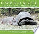 Owen et Mzee   l histoire vraie d une amiti   incroyable