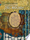 Essential Cell Biology  Fourth Edition