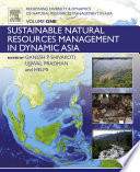 Redefining Diversity and Dynamics of Natural Resources Management in Asia  Volume 1