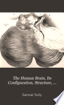 The human brain  its configuration  structure  development and physiology
