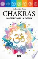 Chakras Correspondencias Y Vitalidad Energ Tica