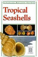 Tropical Seashells