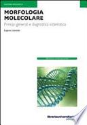 Morfologia molecolare