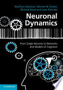 Neuronal Dynamics The Tools Of Mathematics To Approach