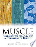 Muscle 2 Volume Set