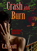 Crash And Burn : every traveler tells a tale.and in this life...