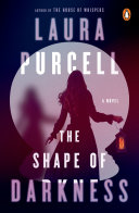The Shape of Darkness Book