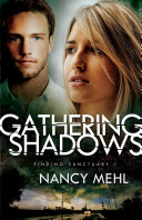 Gathering Shadows : station in st. louis, but even a...