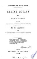 Marine botany and sea-side objects