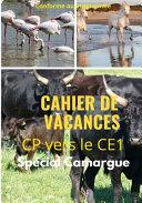Cahier de Vacances CP vers le ce1 Spécial Camargue conforme au programme