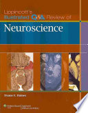 Lippincott s Illustrated Q A Review of Neuroscience