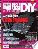 DIY 12         2013    197