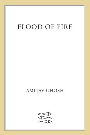 Flood of Fire: A Novel - ISBN:9781429944281