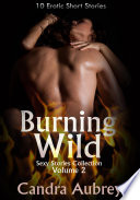 Burning Wild  Sexy Stories Collection Volume 2