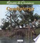 Caudipteryx  Ritratti di dinosauri
