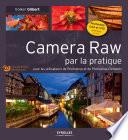Camera Raw par la pratique