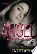 Angel Book PDF