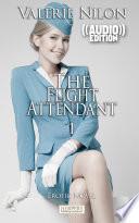 the flight attendant audio erotic novel