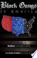 Black Gangs In America book