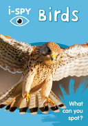 I SPY Birds