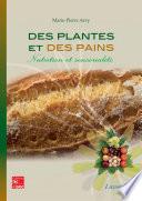 Des pains aux plantes     nutrition et sensorialit