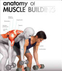 The Anatomy of Muscle Building
