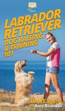 Labrador Retriever Dog Raising Training 101