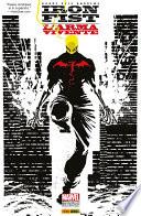 Iron Fist Marvel Collection