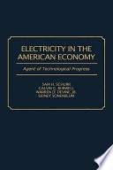 Electricity in the American Economy