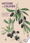 Histoire de l olivier