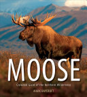 Moose Animal Moose Features The Biology And Natural History