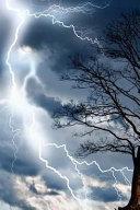 Tree Storm Journal