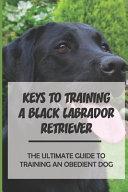Keys To Training A Black Labrador Retriever