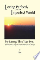 Loving Perfectly in an Imperfect World   My Journey thru your Eyes