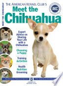 Meet the Chihuahua