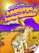 Antelope Jackrabbits Book PDF