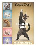 Yoga Cats Calendar 2020 Yoga Cat Position