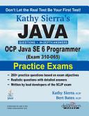 Java Ocp Java Se 6 Programmer Exam 310 065 Practice Exams