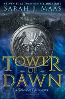 Tower of Dawn Bestselling Throne Of Glass Series Follow Chaol