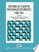 Sistema de Cuentas Nacionales de M  xico 1988 1991  Tomo III  Cuentas de producci  n a precios corrientes y constantes