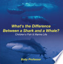 What s the Difference Between a Shark and a Whale    Children s Fish   Marine Life