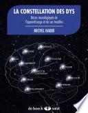 illustration du livre La constellation des dys
