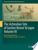 The Acheulian Site of Gesher Benot Ya   aqov Volume III