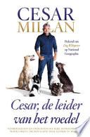 Cesar De Leider Van Het Roedel