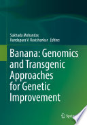 Banana: Genomics and Transgenic Approaches for Genetic Improvement