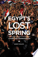 Egypt s Lost Spring  Causes and Consequences