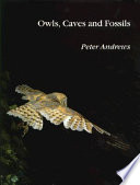 Owls Caves And Fossils