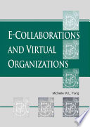 E collaborations and Virtual Organizations