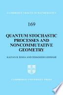 Quantum Stochastic Processes and Noncommutative Geometry