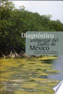 Diagn  stico ambiental del Golfo de M  xico
